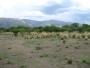 Terrenos cerca de Merlo.San Luis Argentina
