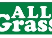 Allgrass cesped artificial