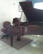 VENDO PIANO DE COLA PUERTO RICO OPORTUNIDAD