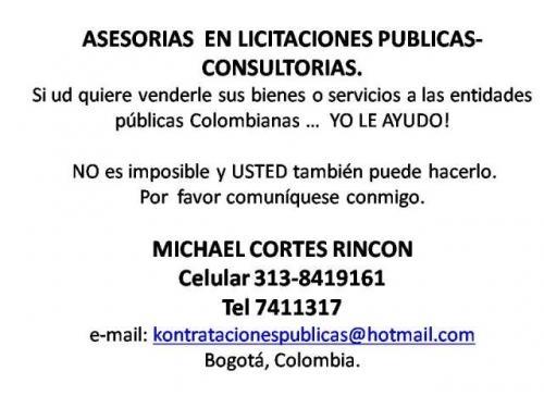 Asesoria licitaciones publicas