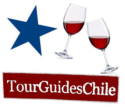 Culture, history, wine & party tours