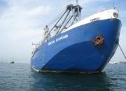 Barco a la venta