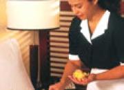 Se Busca Empleada Domestica en Tampa, FL