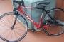 Lombardo Hicher Bicicleta de carrera Profesional