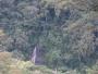 Costa Rica se venden fincas grandes desde 1000hect a  300.000 hect