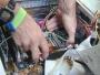 cervicios de reparacion de computadoras
