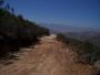 vendo lotes  de 1000 metros dentro de bosque  a 15 miutos de tecate en carretera que va a ensenada