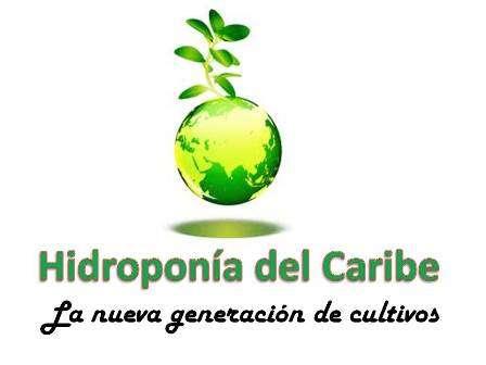 Fotos de Hidroponia del caribe busca socio comercial 1