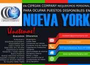 Ciprian company requiere ejecutivos de ventas